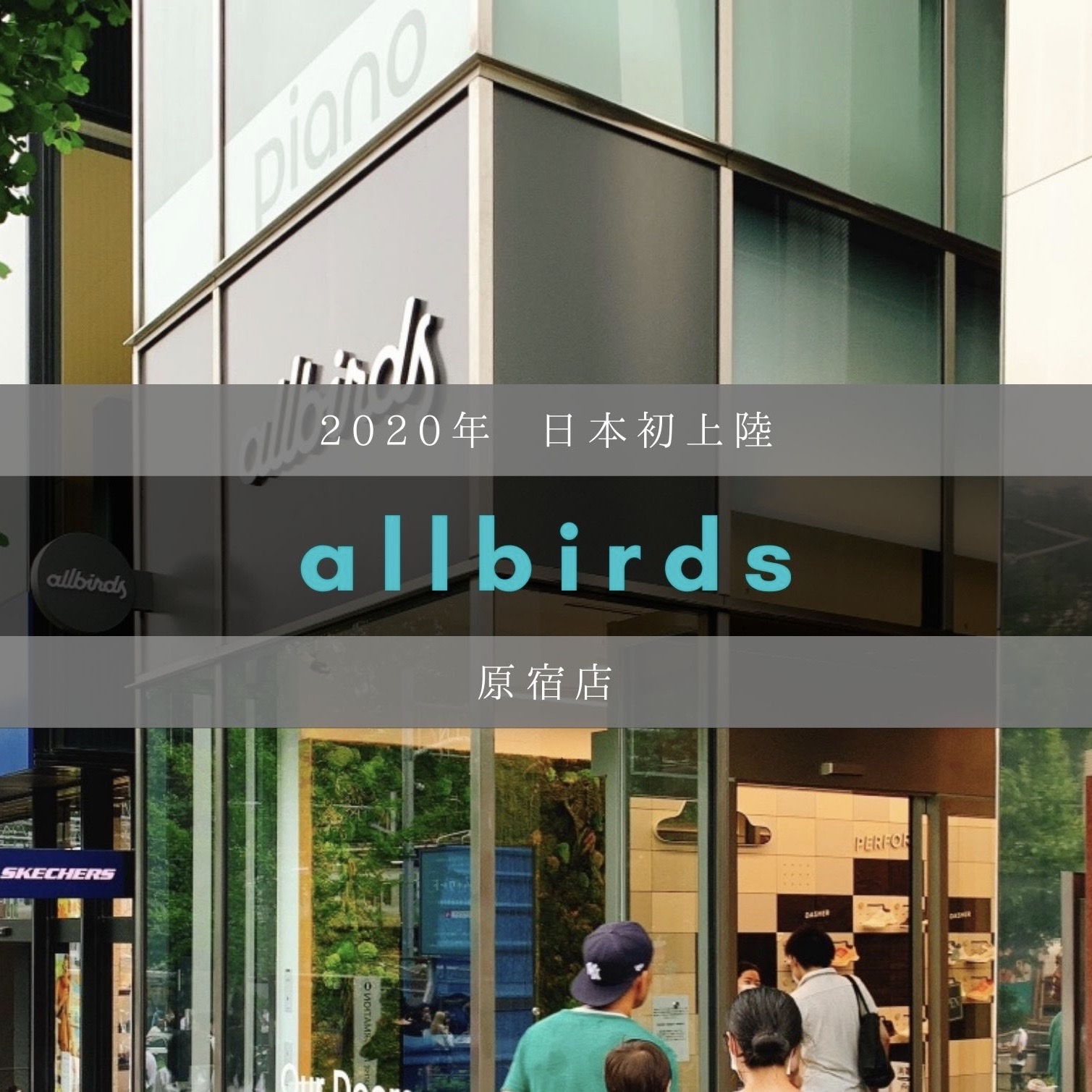 Allbirds原宿店